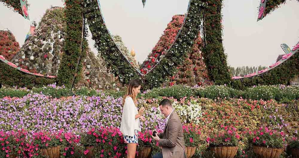 Couple proposing in Dubai Miracle Garden